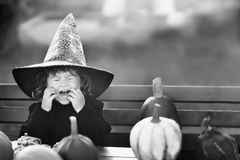 Little girl with pumpkins. Halloween black and white greeting card. Copyspace. Happy little child with pumpkins, having fun. Halloween decorations black and Royalty Free Stock Photography