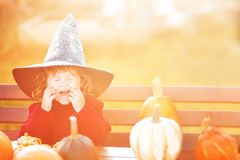 Little girl with pumpkins. Halloween greeting card, warm toned. Copyspace. Royalty Free Stock Image