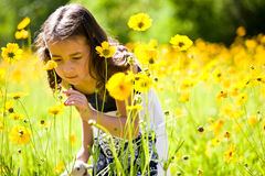 Happy little girl. A happy girl enjoying flowers Royalty Free Stock Photos