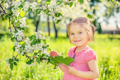 Happy little girl in apple tree garden Stock Photography