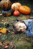 Happy little girl in the autumn Royalty Free Stock Image