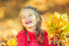 Happy little girl with autumn leaves. In the park Royalty Free Stock Photography