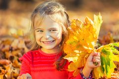 Happy little girl with autumn leaves Royalty Free Stock Photography