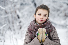 Happy little girl on the background of a winter park Royalty Free Stock Images