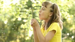 Happy little girl blowing a dandelion off making a wish. Close-up portrait stock footage