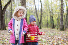Happy little girl and boy with yellow maple leaflets Royalty Free Stock Images