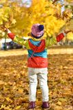 little girl in bright clothes playing with leaves stock images