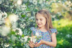 Happy little girl in cherry blossom garden Stock Photography