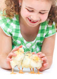 Happy little girl with chickens Royalty Free Stock Images