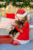 Happy Little girl and dog at Christmas Stock Images
