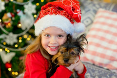 Happy Little girl and dog at Christmas Stock Photos