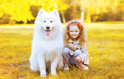 Happy little girl and dog having fun in sunny autumn day Stock Photos
