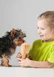 Happy little girl feeding of yorkshire terrier Royalty Free Stock Photos
