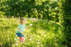 Happy little girl on the field Royalty Free Stock Photos