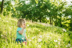 Happy little girl on the field Royalty Free Stock Photo