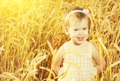 Happy little girl in a field of golden wheat in summer royalty free stock images