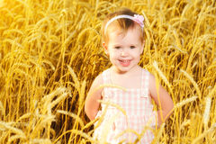 Happy little girl in a field of golden wheat in summer Royalty Free Stock Image