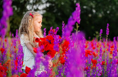 Happy little girl in a field of poppies Stock Images