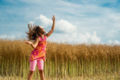 Happy little girl in a field of ripe rapeseed royalty free stock photos