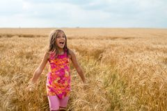 Happy little girl in a field of ripe wheat royalty free stock photo