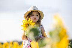 Happy little girl on the field of sunflowers in summer. beautiful little girl in sunflowers Stock Photos