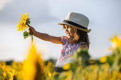 Happy little girl on the field of sunflowers in summer. beautiful little girl in sunflowers Royalty Free Stock Image