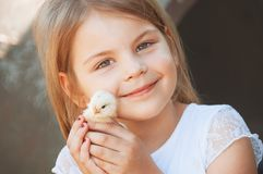 Happy little girl  holds a chicken in his hands. Child with poul Royalty Free Stock Image