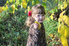Happy little girl holds leaf next to yellow trees Royalty Free Stock Image