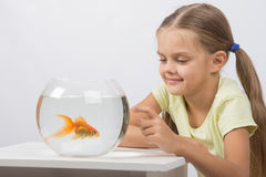 Happy little girl knocking his finger on the aquarium with goldfish Stock Image