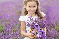 Happy little girl in lavender field with basket stock image