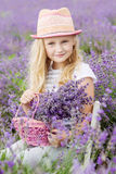 Happy little girl is in a lavender field Royalty Free Stock Images