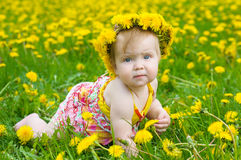 Happy little girl  on the meadow Stock Image