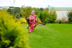 Happy little girl playing with a big dog Stock Photo