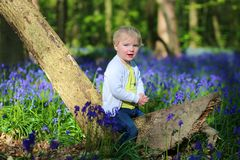 Happy little girl playing in bluebells forest Stock Photos
