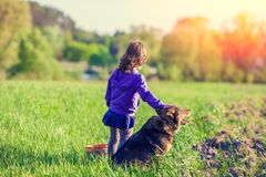 Little girl playing with dog on the field. Happy little girl playing with dog on the field at sunset Royalty Free Stock Images