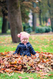 Happy little girl playing with leaves Stock Images