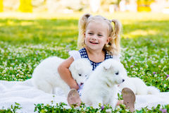 Happy little girl playing with Samoyed puppy. In the summer garden on the green grass stock image