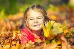 Happy little girl plays with autumn leaves Royalty Free Stock Images