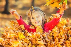 Happy little girl plays with autumn leaves. In the park Royalty Free Stock Photo