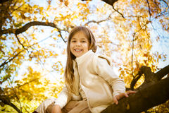 Happy little girl sitting on a tree trunk Stock Image