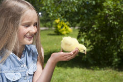 Happy little girl with a small chicken stock photos