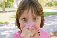 Happy little girl smelling flower royalty free stock images