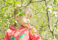Happy little girl in spring forest Royalty Free Stock Photos
