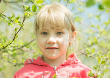 Happy little girl in spring forest royalty free stock photography