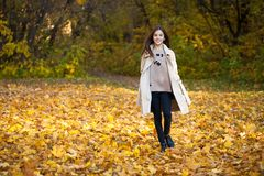 Beauty little girl walking in autumn park royalty free stock photography