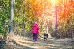 Little girl walking with a dog in the forest. Happy little girl walking with a dog on a dirt road in forest back to the camera Royalty Free Stock Photo