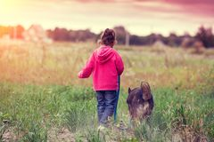 Happy little girl walking with dog in the field royalty free stock image