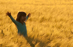 Happy little girl walking in the field of wheat Stock Images