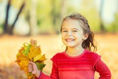 Free Happy Little Girl With Autumn Leaves Stock Images - 101412924