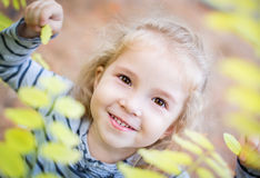 Happy little girl among yellow leaves in autumn Stock Image